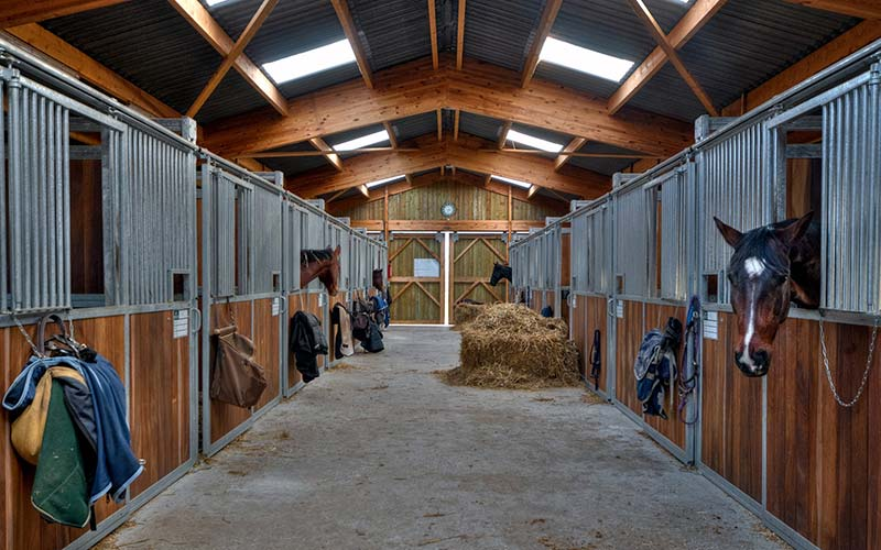 Equine Supplier Lancaster
